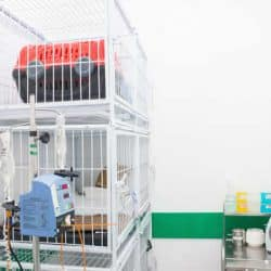 hospital-veterinario-24-horas_clinica-veterianaria-24-horas-10