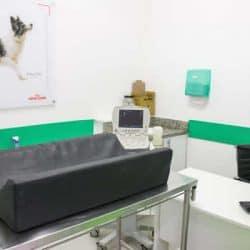 hospital-veterinario-24-horas_clinica-veterianaria-24-horas-11