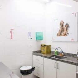 hospital-veterinario-24-horas_clinica-veterianaria-24-horas-19