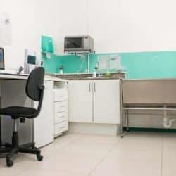 hospital-veterinario-24-horas_clinica-veterianaria-24-horas-5