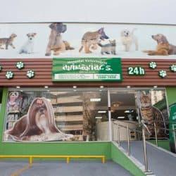 hospital-veterinario-em-sao-paulo-1