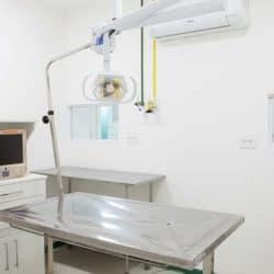 hospital-veterinario-em-sao-paulo-13