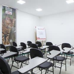 hospital-veterinario-em-sao-paulo-16