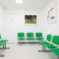 hospital-veterinario-em-sao-paulo-18