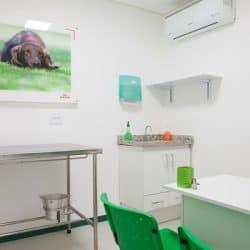 hospital-veterinario-em-sao-paulo-19
