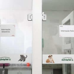 hospital-veterinario-em-sao-paulo-24
