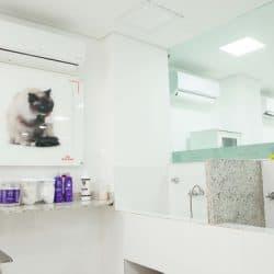 hospital-veterinario-em-sao-paulo-8