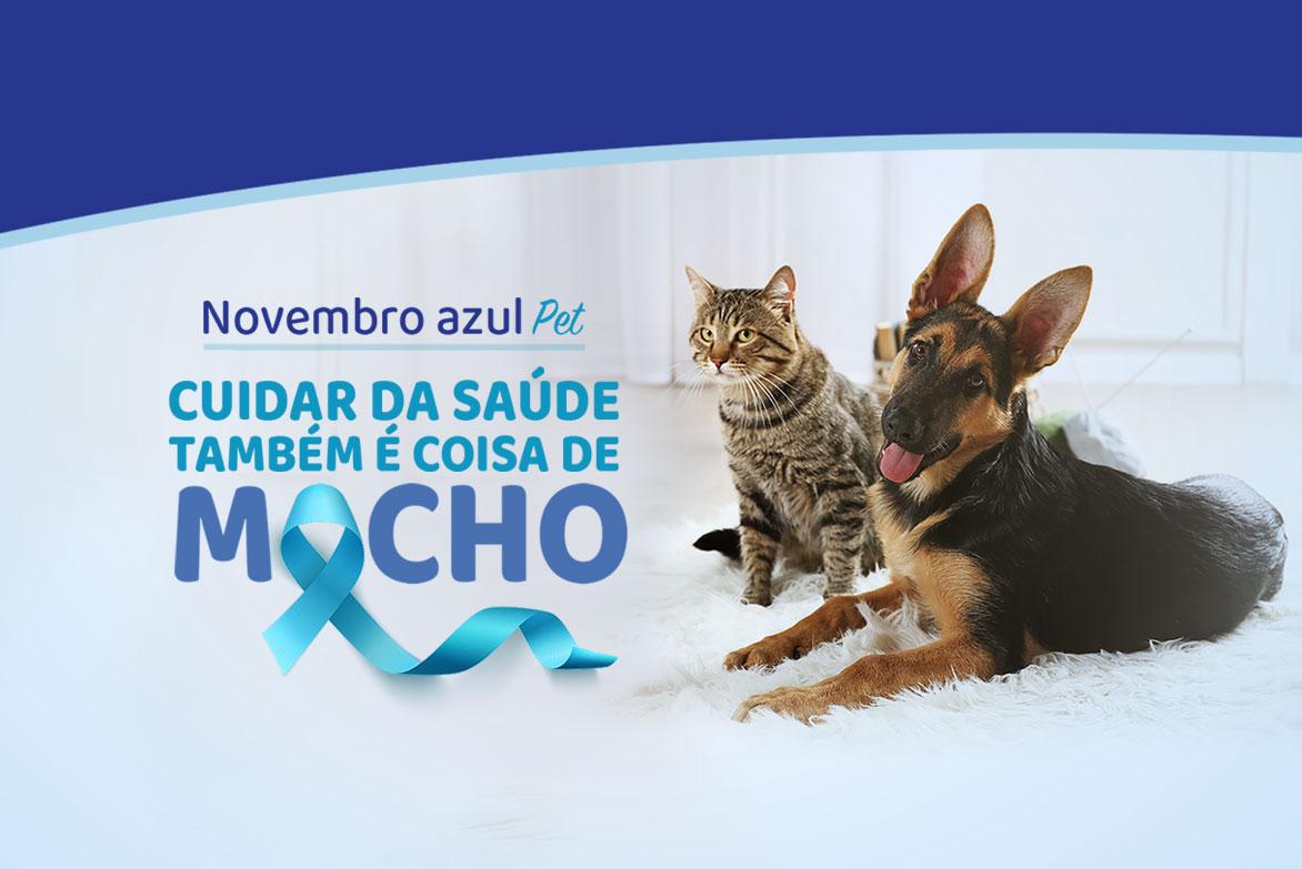 Novembro Azul Pet: Cuidar da saúde também é coisa de macho