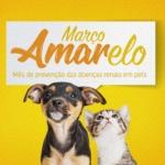 Março Amarelo: prevenção das doenças renais em pets
