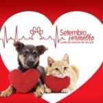 É tempo de cuidar do coração de nossos pets